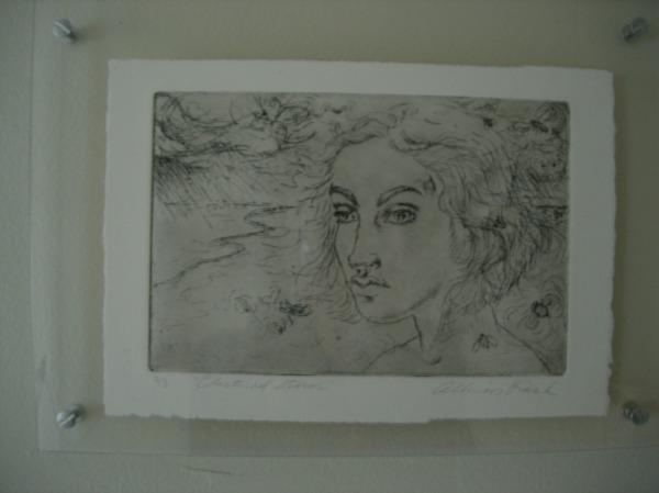 allie print 2