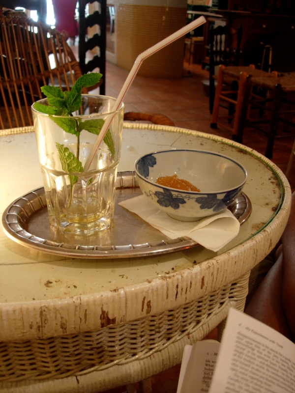 "Iced green tea with a mint sprig the size of a sapling. Little bowl of candied ginger. Gandhi's autibiography, ""My Experiments With Truth."" A sparkling afternoon."